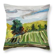 A Fall Day In The Townships Throw Pillow