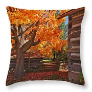 A Fall Day Throw Pillow
