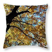 A Falling Maple Leaf Throw Pillow
