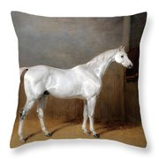 A Favourite Grey Horse Belonging To George Reed Standing In A Loose Box Throw Pillow