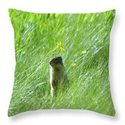 A Fernie Gopher  Throw Pillow