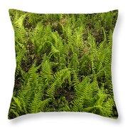 A Field Of Ferns Throw Pillow