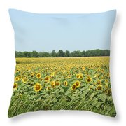 A Field Of Smiles Throw Pillow
