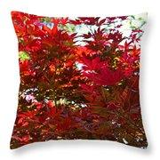 A Fiery Breeze Throw Pillow