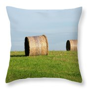 A Fine Day Throw Pillow