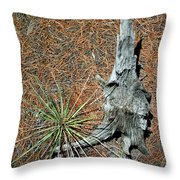 A Fine Pair Throw Pillow