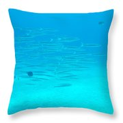 A Fish Shoal In Blue Water Throw Pillow