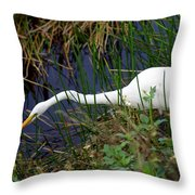 A Fishing We Will Go Throw Pillow