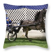A Flashy Pony Throw Pillow