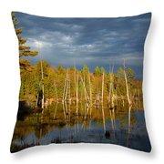A Fleeting Sunset Moment Throw Pillow