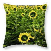 A Flock Of Blooming Sunflowers Throw Pillow by Dennis Dame