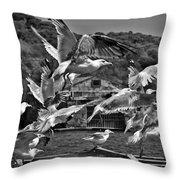 A Flock Of Seagulls Flying High To Summer Sky Throw Pillow