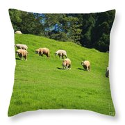 A Flock Of Sheep Grazes On Lush Grass Throw Pillow