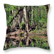 A Florida Riverine Forest 2 Throw Pillow