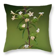 A Flower Tower Throw Pillow