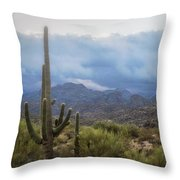 A Foggy Winter Morning  Throw Pillow