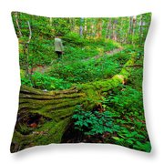 A Forest Stroll Throw Pillow