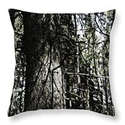 A Forest Walk Throw Pillow