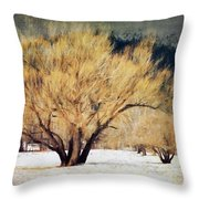 A Forgotten Winter Throw Pillow