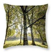 a Forest part 1 Throw Pillow