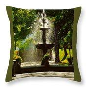 A Fountain In A St. Paul Park Throw Pillow