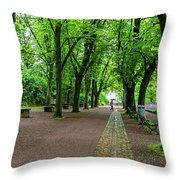 A Freiburg Germany Park Throw Pillow