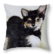 A Friend With A Smile  Throw Pillow