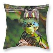 A Friendly Dragon Throw Pillow