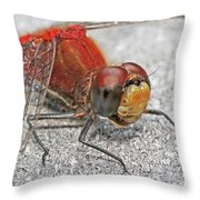 A Friendly Red Dragon Throw Pillow
