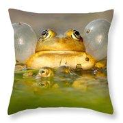 A Frog's Life Throw Pillow