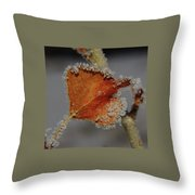 A Frosted Leaf  Throw Pillow