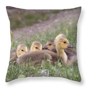 A Gaggle Of Goslings Throw Pillow
