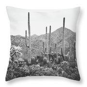 A Gathering Of Cacti Throw Pillow