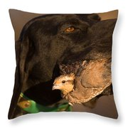 A German Shetland Proudly Holds Throw Pillow