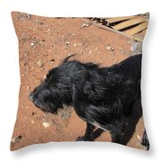 A Giant Dog Throw Pillow