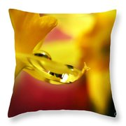 A Gift... Throw Pillow