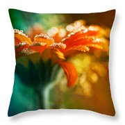 A Gift From God Throw Pillow