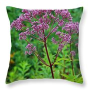 A Gift To Remember Throw Pillow