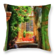 A Glimpse Throw Pillow