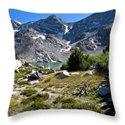 A Glimpse Of Treasure Throw Pillow
