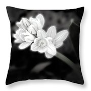 A Glowing Daffodil Throw Pillow
