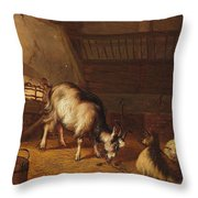 A Goat And Two Sheep In A Stable Throw Pillow