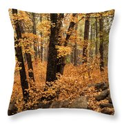 A Golden Autumn Forest  Throw Pillow
