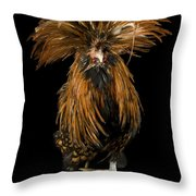 A Golden Polish Chicken Throw Pillow