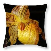 A Golden Slipper Throw Pillow
