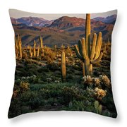 A Golden Sonoran Evening  Throw Pillow
