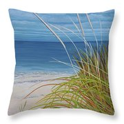 A Good Day For Beachcombing Throw Pillow
