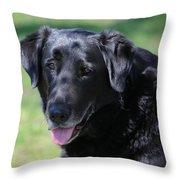 A Good Dog Throw Pillow