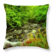 A Good Morning To Hike Throw Pillow