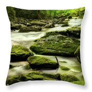A Good Way To Start The Morning Throw Pillow